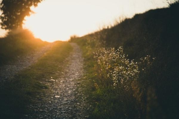gravel driveway homegrown poems header