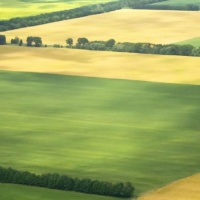 Salute to Agriculture slated for Aug. 10
