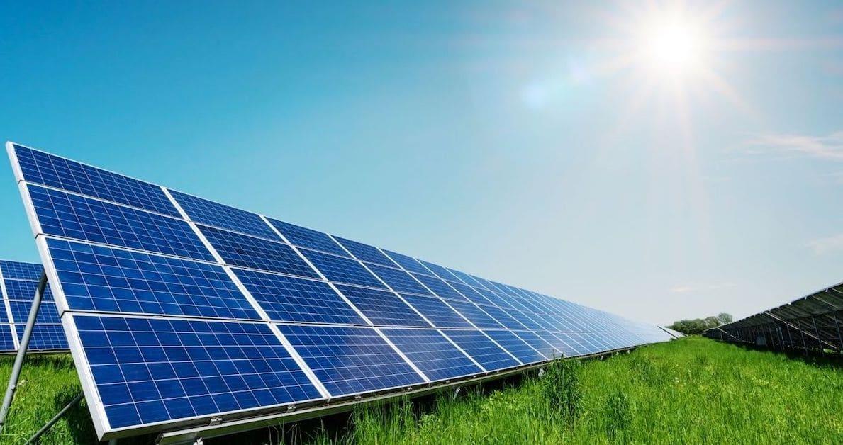 solar panels farm feature