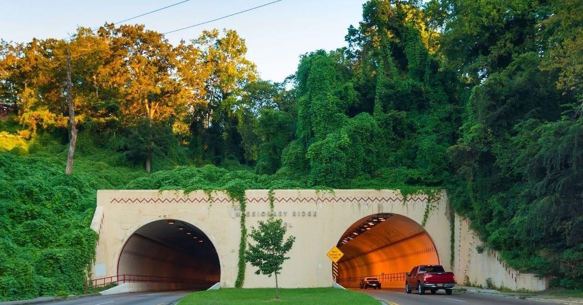 kudzu tunnel feature