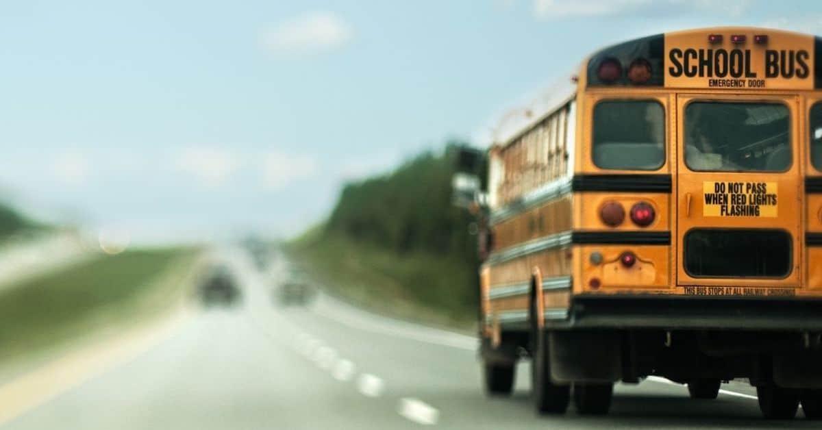 school bus feature