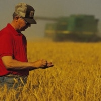 Kentucky is investing in several initiatives to address farmer suicide